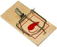 Мышеловка деревянная 6х12